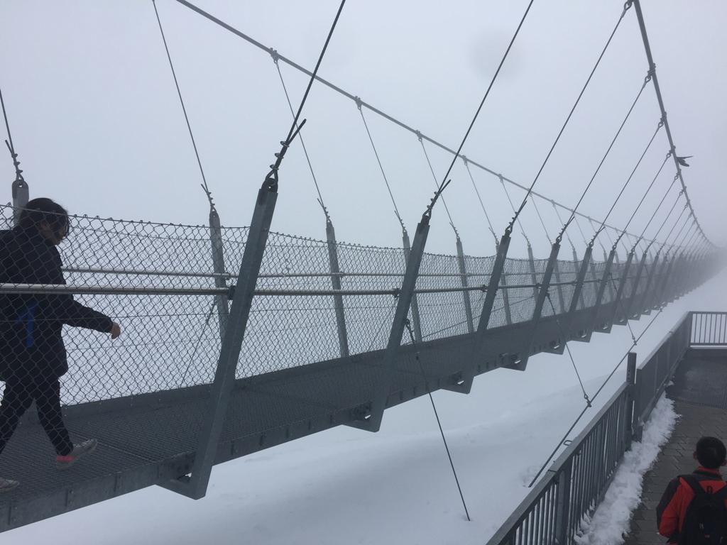铁力士山吊桥