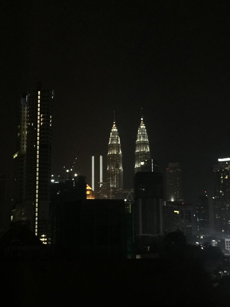 酒店看双子塔