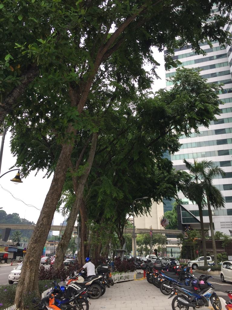 吉隆坡街道